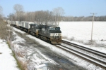 NS 9373 east with piggies