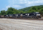 NS Purvis coal train