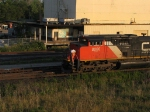CN 8000