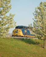 CSXT 302 and spring blooms