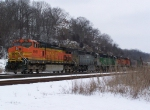BNSF 4951 Waits for a Green Signal