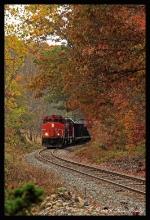 Fall Foliage on the NECR
