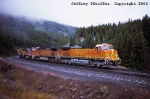 BNSF 5003
