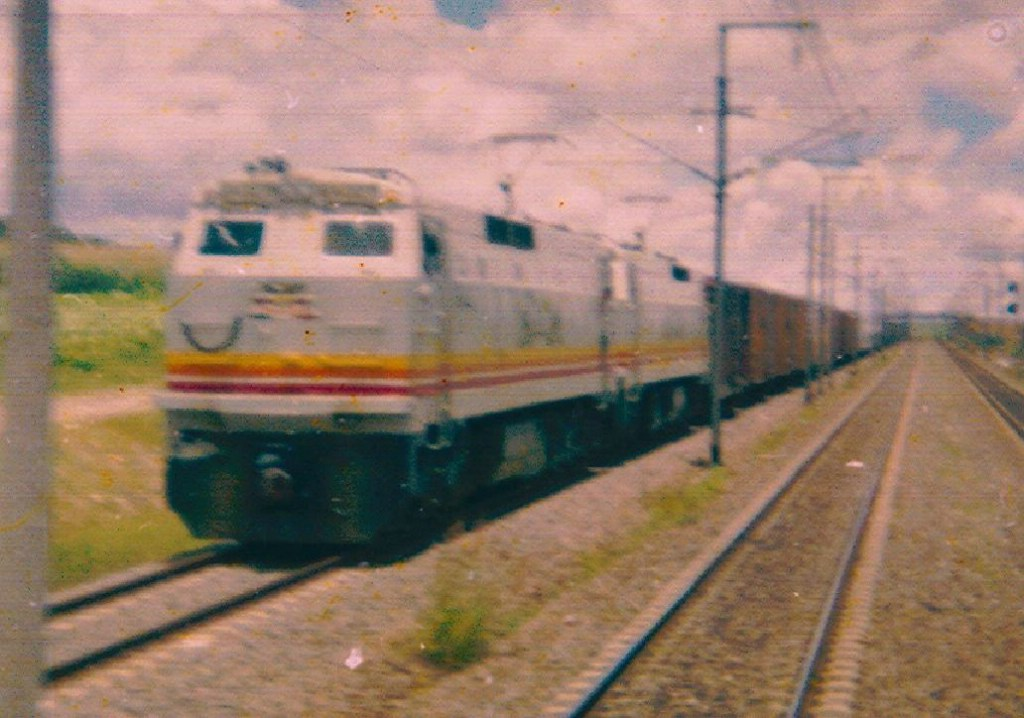 NDM 029