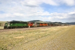 MRL Coal Train