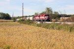 T006 cuts across the fields near Thresherman's Park