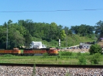 BNSF 9983 Sneaks Through the Overgrowth