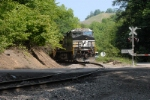 j96 pushers slide out of view up the holler on the pardee branch