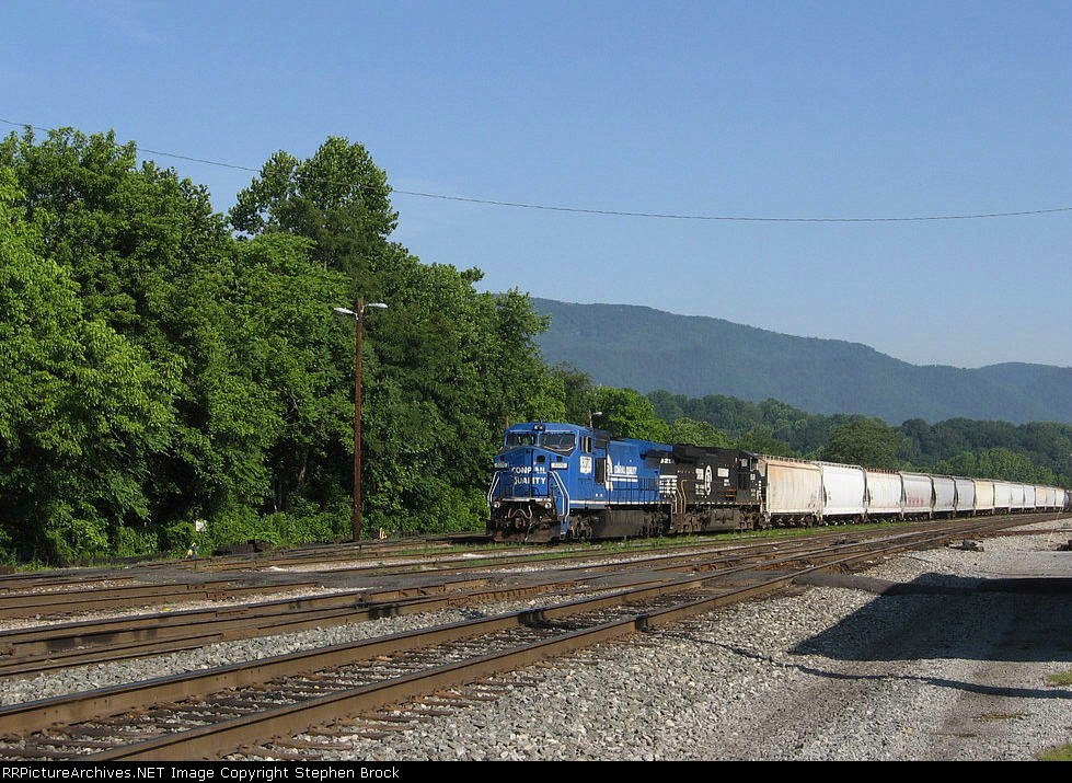 NS 8370 & 9251 tied down