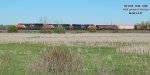Potash empties marching across the marsh