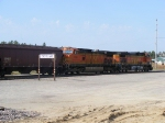 BNSF 4186 and BNSF 5495