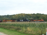 BNSF 1112 Leads a Grain Train Past some Grain (Corn)