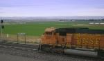 Inbound Coal
