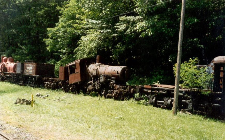 Cass Scenic Railroad Climax # 9