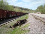 Ex-ATSF hoppers make up this grain train