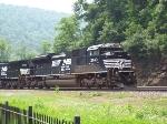 eastbound pig train
