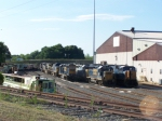 Gaggle of Locomotives