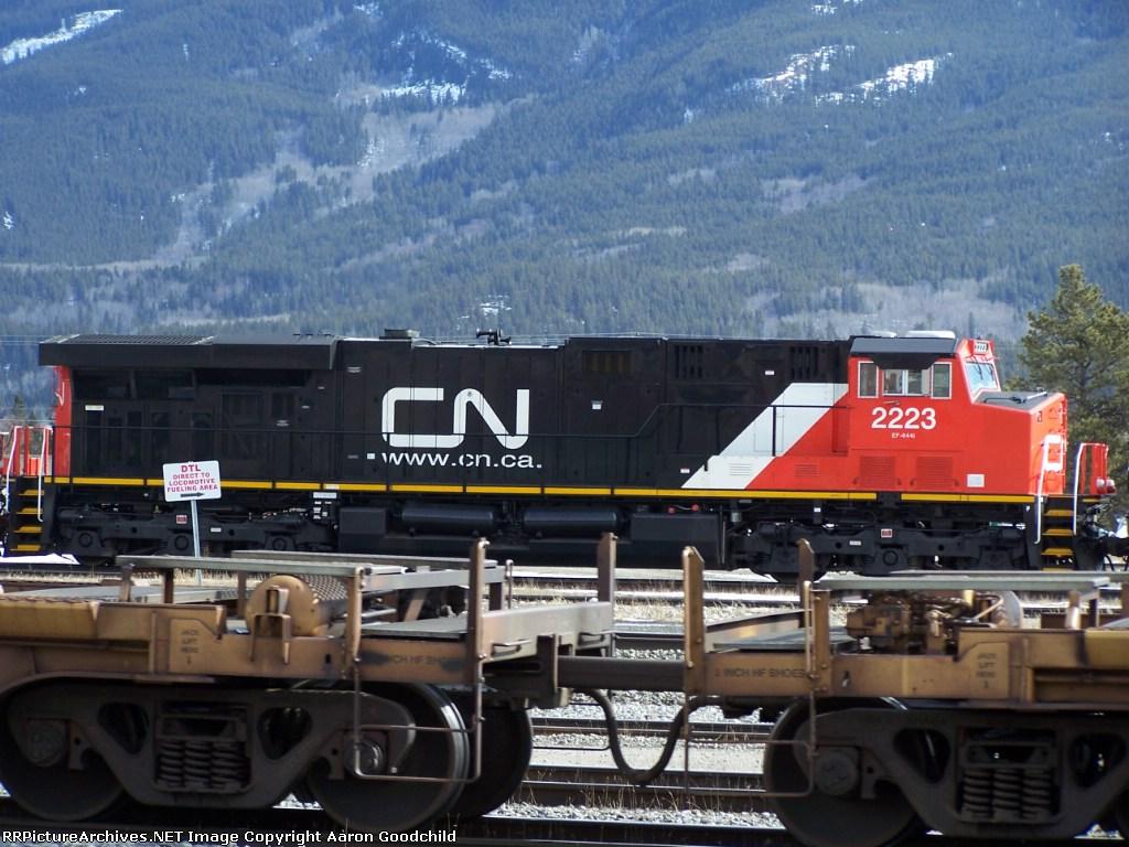 CN 2223