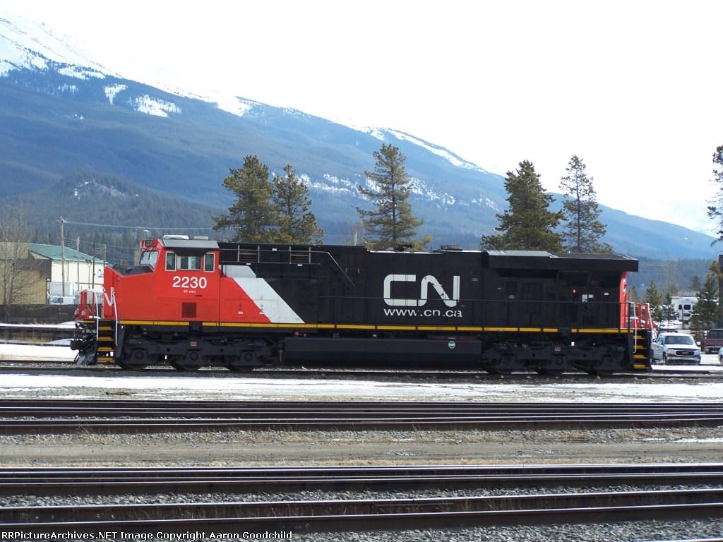 CN 2230