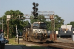 Pig train poses under the signal bridge