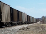 Empty BNSF coal drag