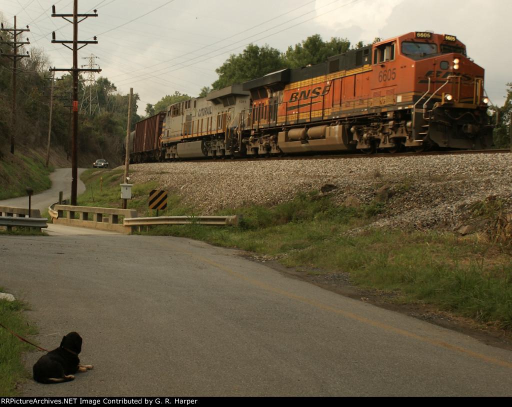 CSX CBR train K08015 in the curve at V.E.S. Rd & Hydro St.