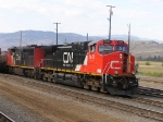 Intermodel train waiting to leave Kamloops yard.