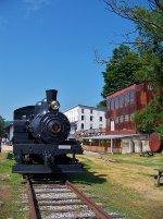 Cass Scenic Railroad #3