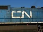CN Noodle