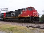 CN 8003
