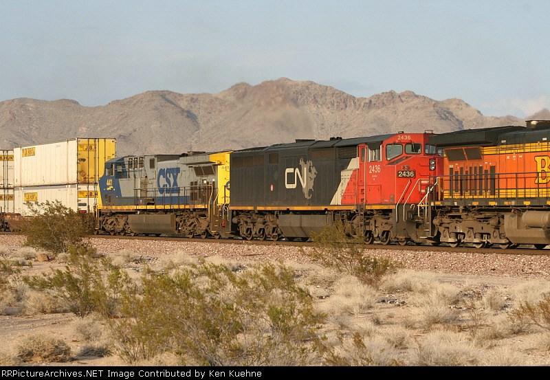 CN 2436