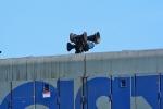 Horn on CSX 7674