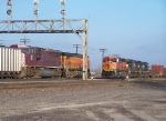 Two BNSF trains meet