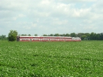 Red train amongst the green fields