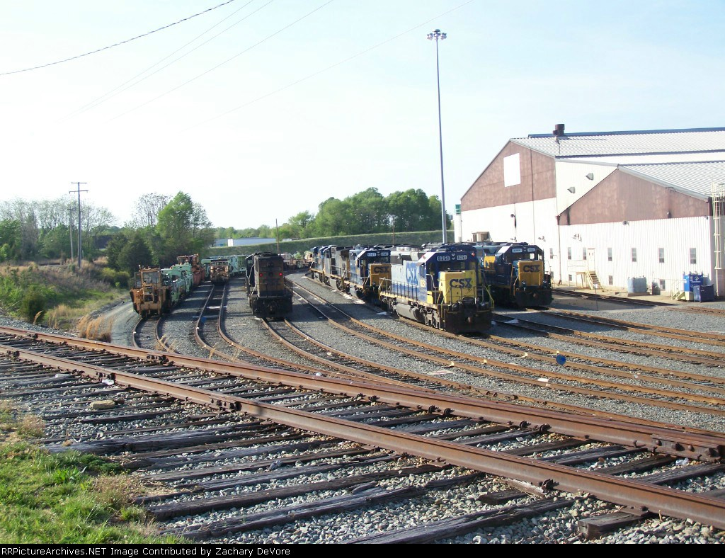 CSX 8251 with about 9 other locomotives