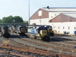 CSX 8251 and Numerous Others