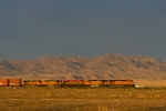BNSF 7734