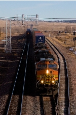 BNSF 4981 overtakes BNSF 751