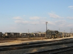 """NS """"Variety"""" on the west end of the yard"""