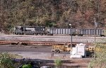 NS 2864 veteran pulling a string of coal loads