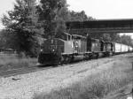 CN 5328
