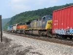CSX 5013 following CEFX 7081, 3110, 3145 & FURX 3043
