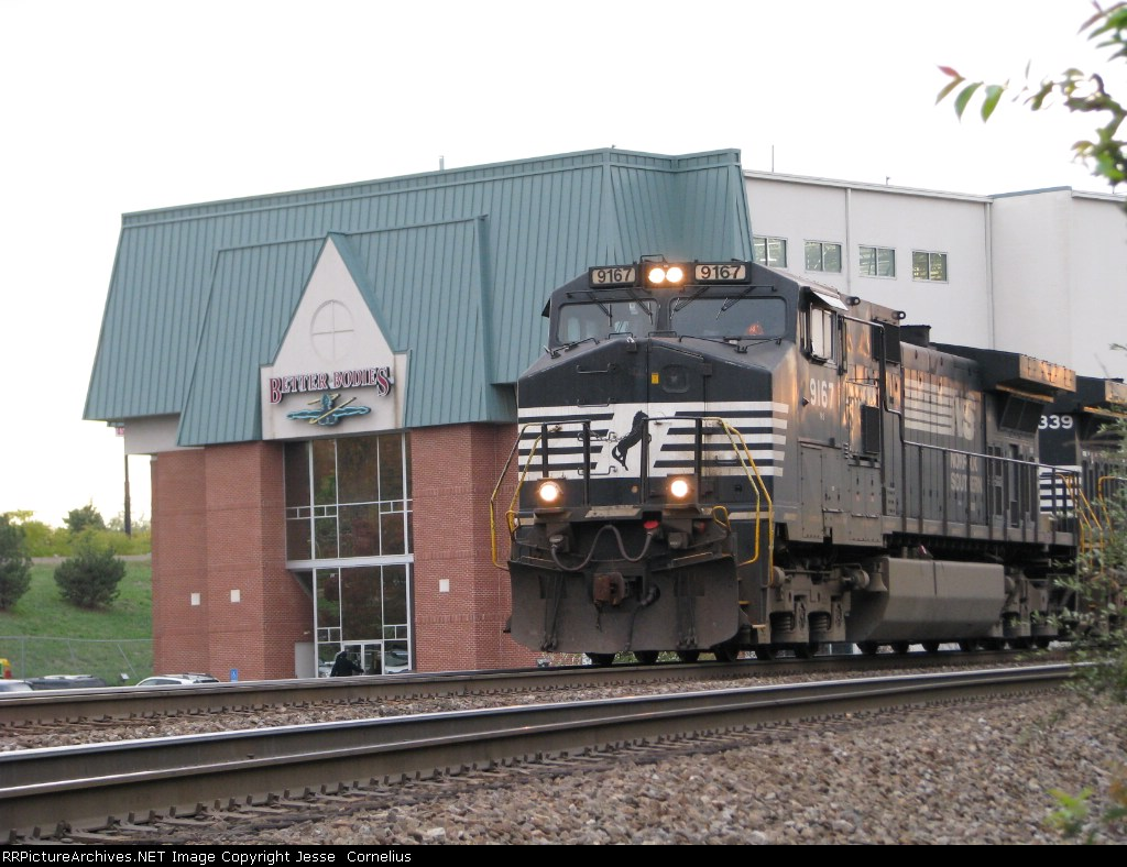 NS 9167 and Better Bodies