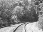 B&W of tracks and scenery