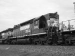 NS 3184