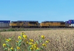 Southbound Intermodal During Railfest