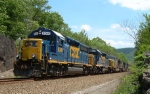 CSX 6341 leads Q410 at Iona Island