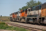 Going away shot of Burlington Northern Santa Fe Railway (Empty) Unit Coal Train