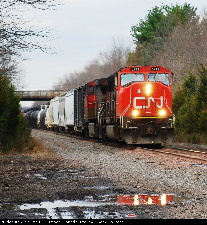 CN 5711 leads CSX's Q300 beneath the Route 206 overpass