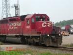 CP 5607